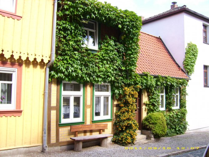 Ferienhaus Timme - Familie Timme